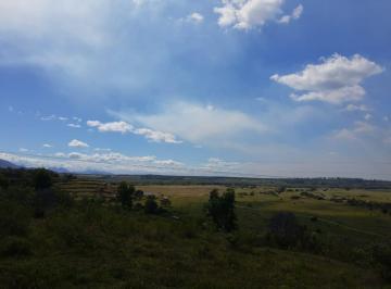 Rural , Serra