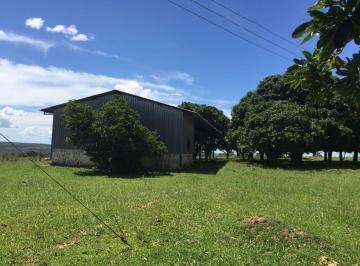Rural de 0 quartos, Niquelândia