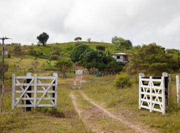 Rural de 0 quartos, Mata de São João