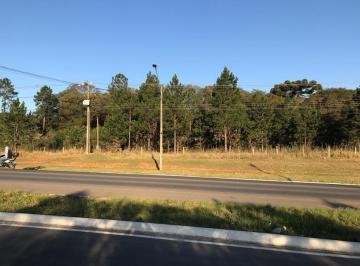 http://www.infocenterhost2.com.br/crm/fotosimovel/767198/134250969-area-colombo-guaraituba.jpg