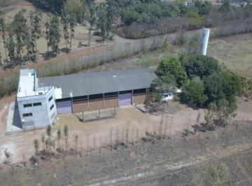 Rural de 2 quartos, Goianápolis