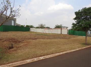 bonfim-paulista-terreno-condominio-reserva-santa-luisa-15-10-2020_12-28-51-0.jpg