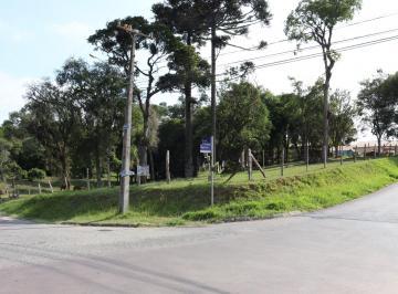 Terreno , São José dos Pinhais