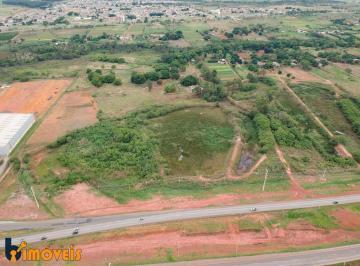 Terreno , Samambaia