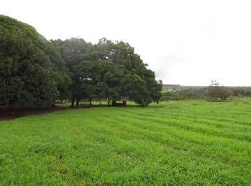 Rural de 2 quartos, Planaltina de Goiás