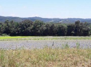 Rural , Mogi das Cruzes