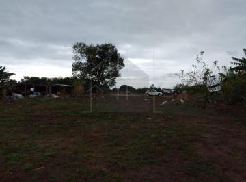 campinas-terreno-residencial-campo-grande-06-10-2020_11-38-08-2.jpg