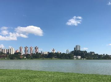 foto - Curitiba - Bigorrilho