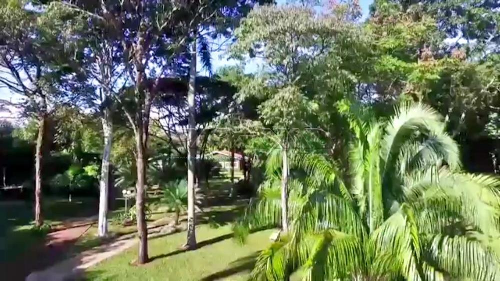 bonfim-paulista-casa-condominio-quinta-da-alvorada-28-09-2016_10-00-11-0.jpg