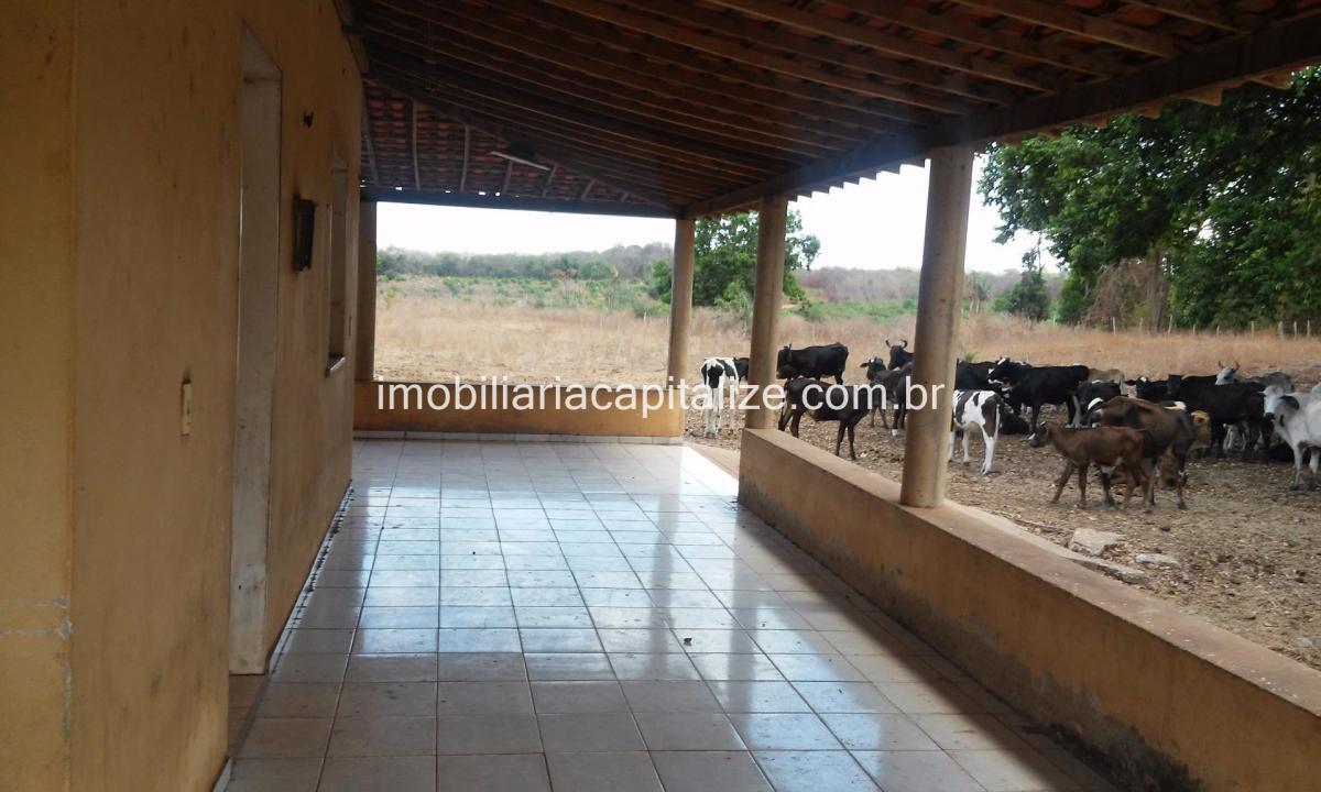 fazenda 130 hectares, venda, 1 km da br - 343 estrada teresina altos - pi