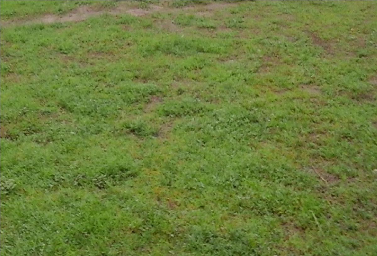 terreno para venda na estrada de parnaíba camucim em parnaíba - pi