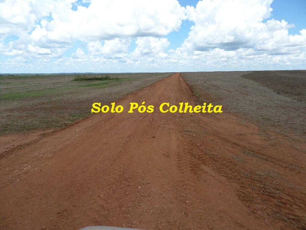Rural de 1 quarto, Ribeirão Cascalheira