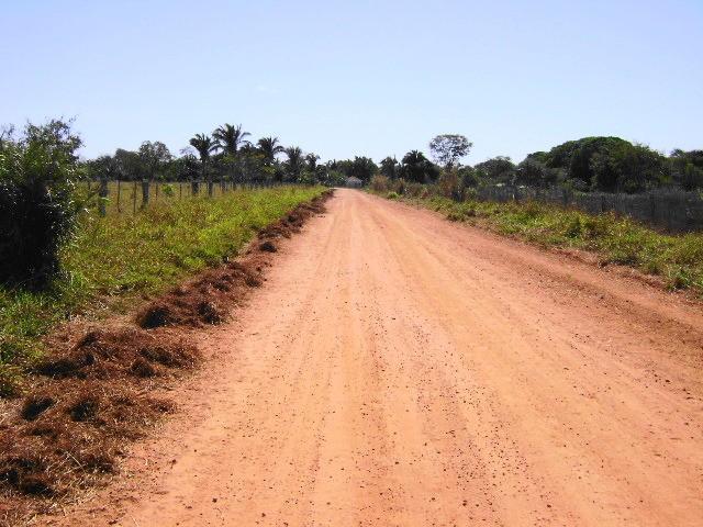 rural - cocalinho