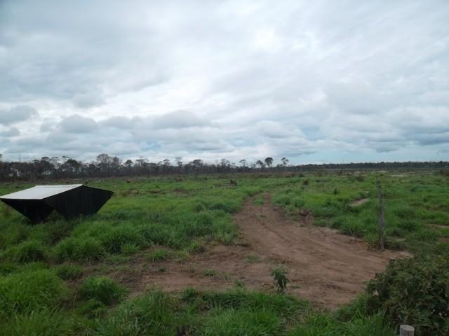 fazenda à venda em rural