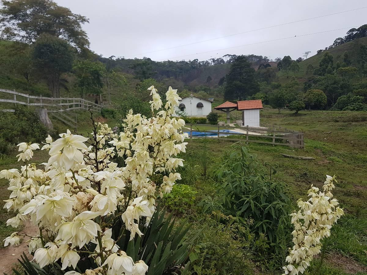 Rural de 0 quartos, Barbacena