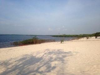 terreno, praia rio negro, beira do rio