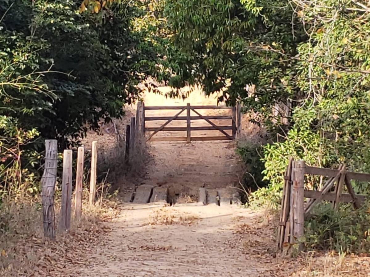 goiais fazenda