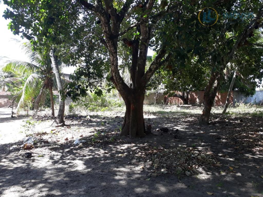 área 6 hectares