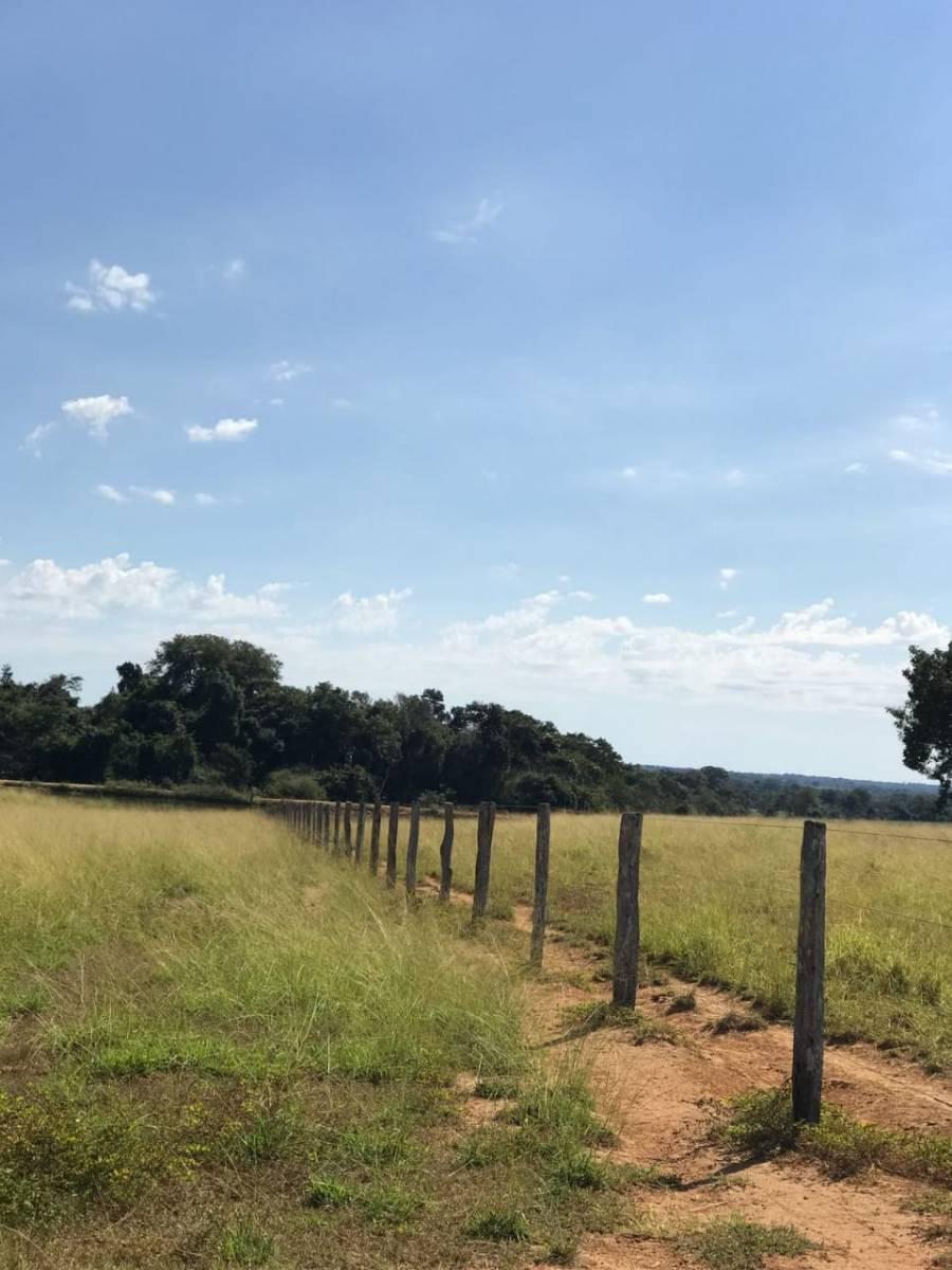 Rural de 0 quartos, Mundo Novo