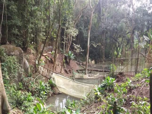 aacuterea-terreno-area-palmeiras-suzano.jpg