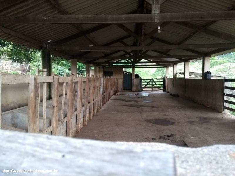 fazenda para venda - carmópolis de minas mg, bairro zona rural