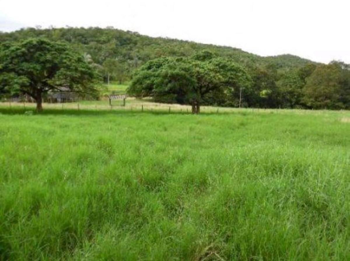Rural de 1 quarto, Cuiabá