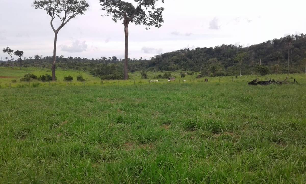 Rural de 1 quarto, Paranaitá