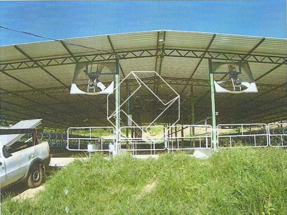 caldas-novas-rural-fazenda-fazenda-santa-lucia-10-05-2019_12-16-35-3.jpg