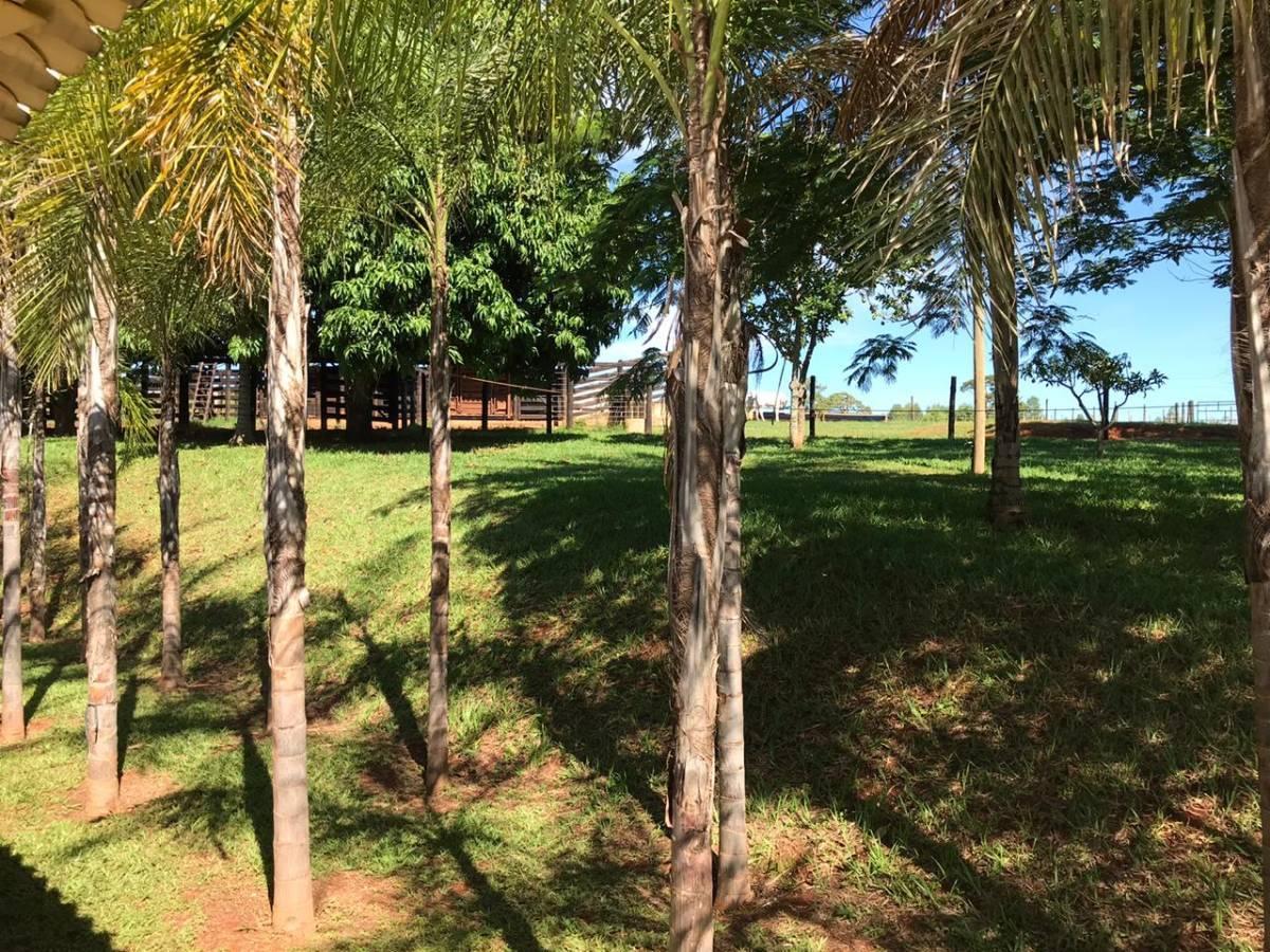 Rural de 3 quartos, Bela Vista de Goiás