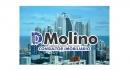 D.Molino Consultoria de Imóveis